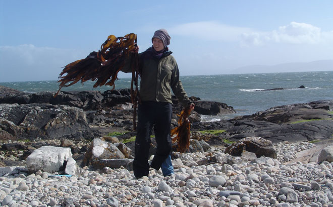 Julia Lohmann researching kelp species in Iceland 2009
