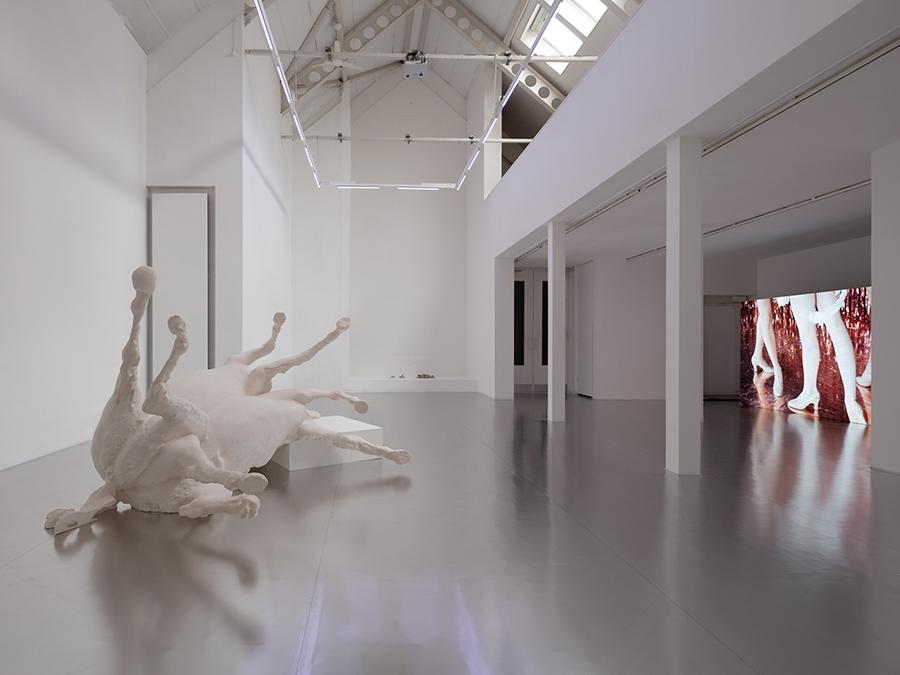 Revital Cohen & Tuur Van Balen | Stanley Picker Gallery