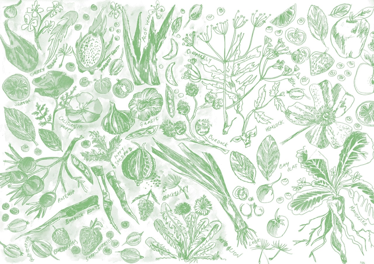 Collaboration: Hogsmill Community Garden and Kingston School of Art